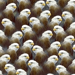 Majestic Eagles Bald Eagle Heads Packed Cotton Fabric