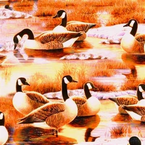 Picture of Duck, Duck, Goose! Canadian Geese Wetlands Brown Cotton Fabric