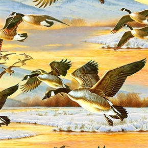 Duck Duck Goose Canadian Geese In Flight Cotton Fabric