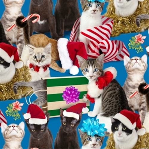 Picture of Holiday Friends Christmas Cats Santa Hats and Presents Cotton Fabric