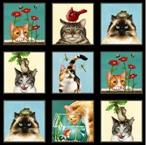 "Picture of Curious Cats Cute Kitten Blocks 24x44"" Large Cotton Fabric Panel"