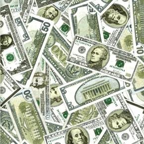 Money Dollar Bill Ones Fives Tens Twenties Hundreds Cotton Fabric