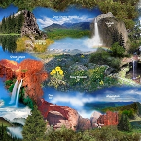 Our National Parks Scenic Yosemite Olympic Zion Cotton Fabric