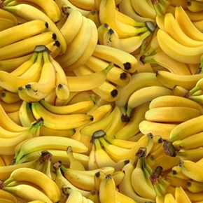 Food Festival Banana Bunches Of Yellow Bananas Cotton Fabric