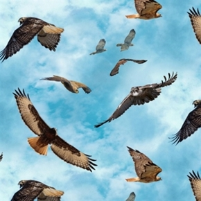 Picture of North American Wildlife Red Tailed Hawk Hawks in Flight Cotton Fabric