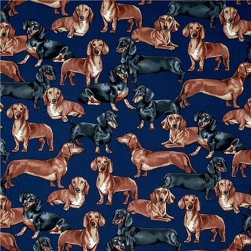 Dachshund Dogs Black And Brown Dachshunds On Navy Blue Cotton Fabric