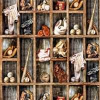 Picture of Play Ball Baseball Equipment in Wooden Lockers Cotton Fabric