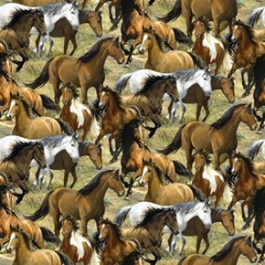 Wild Wings Rhapsody West Packed Wild Horses Horse Cotton Fabric