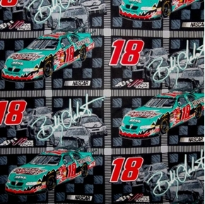 NASCAR 18 Bobby LaBonte Green Car Grey Squares Cotton Fabric