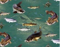 Picture of Top Rod Freshwater Fish Fishing Catfish Underwater Cotton Fabric