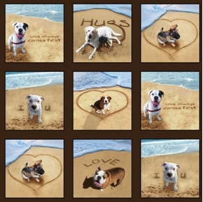 Sand Scribbles Dog Portraits at the Beach 24x44 Cotton Fabric Panel
