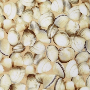 Picture of Maine Attractions Oh Shucks Clam Shells Scallop Shell Cotton Fabric