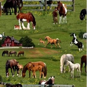 Farm Animals Horses Grazing at the Farm Cotton Fabric