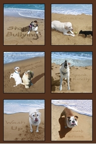 Sand Scribbles Dog Kindness at the Beach 24x44 Cotton Fabric Panel