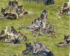 North American Wildlife Wolves Wolf Families in Grass Cotton Fabric