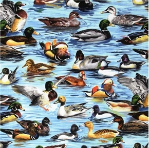Picture of American Wildlife Ducks Duck Breeds in the Water Cotton Fabric