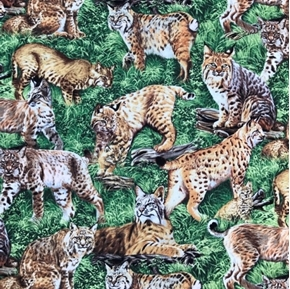 American Wildlife Bobcat Family Bobcats in the Grass Cotton Fabric