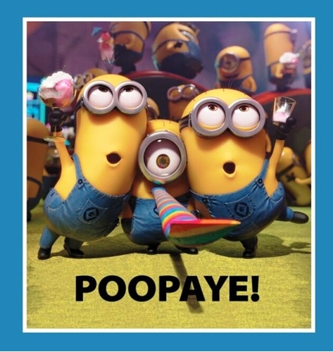 Millions of Minions Poopaye Which Means Goodbye 24x22 Fabric Pillow