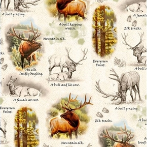 Mountain Elk Vignettes Bull and Cow Forrest Scenes Beige Cotton Fabric