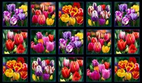 Digital Garden Tulips Tulip Flower Blocks 24x44 Cotton Fabric Panel