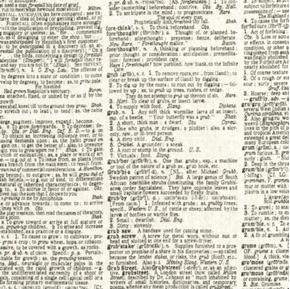 Picture of Dictionary Pages of Dictionary Words Pronunciations Cotton Fabric