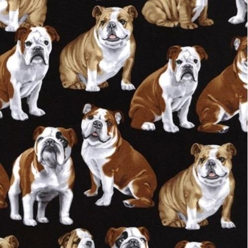 Bulldogs English Bulldog Brown and White Dogs on Black Cotton Fabric