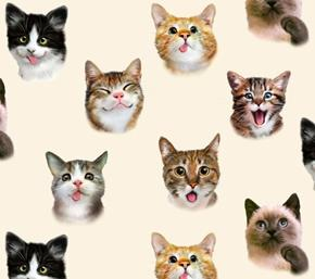 Pet Selfies Cats Silly Cat Faces Cream Cotton Fabric
