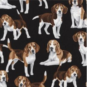Picture of Beagle Dogs Puppy Dog Beagles on Black Cotton Fabric