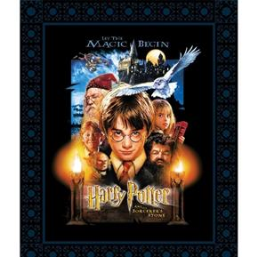 Harry Potter and the Sorcerer's Story Digital Cotton Fabric Panel