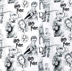 Picture of Harry Potter Ron Weasley Hermione Dumbledore's Army Cotton Fabric