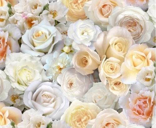 Cotton fabric flower fabric digital garden roses white rose digital garden roses white rose flower blossoms cotton fabric mightylinksfo Images