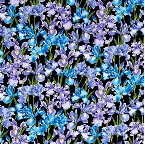 Petal Party Iris Flowers Purple and Blue Irises on Black Cotton Fabric