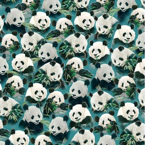 Imperial Panda Packed Pandas Eating Bamboo Teal Cotton Fabric