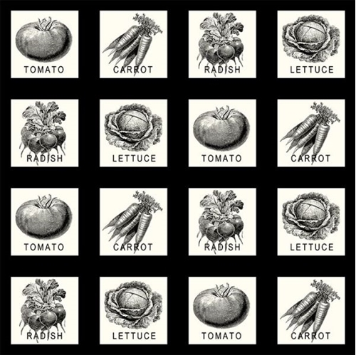 Farm to Table Vegetable Patch Black and White Blocks Cotton Fabric