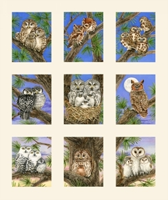 Owl Families Barn Screech Forest Horned Owls Cream 24x22 Cotton Fabric