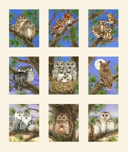 Owl Families Barn Screech Forest Horned Owls Cream 24x22 Cotton Fabric