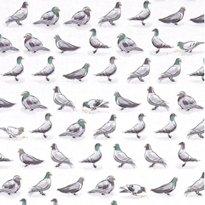 City Life Pigeons in a Row Birds on White Cotton Fabric