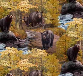 Ursus Americanus American Black Bear Bears in the Woods Cotton Fabric