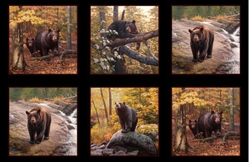 Ursus Americanus American Black Bear Bears 24x44 Cotton Fabric Panel