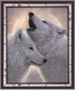Picture of Artworks VII Snowy Wolves Grey Wolf Digital 36x44 Cotton Fabric Panel