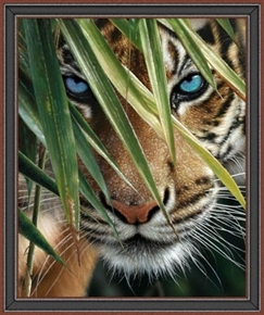 Picture of Artworks VII Tiger Bengal Tiger Digital 36x44 Cotton Fabric Panel