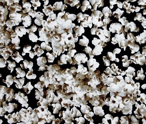 Picture of Tail Gating Snack Attack Popcorn Popped on Black Cotton Fabric