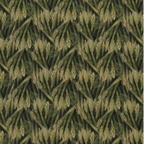 Picture of Carol's Corner Market Asparagus Mia Collection Digital Cotton Fabric