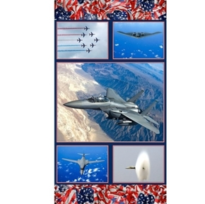 Picture of American Spirit Air Force Air Show Military 24x44 Cotton Fabric Panel