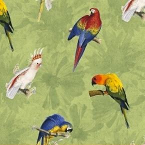 Picture of Rainforest Tropical Bird Parakeet Cockatiel Birds Green Cotton Fabric