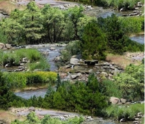 Picture of Landscape Medley Rocky River Stream in Summer Cotton Fabric