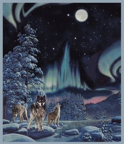 Picture of One of a Kind Northern Lights Wolf Wolves Digital Cotton Fabric Panel