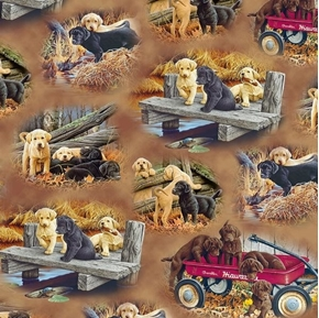 Picture of Labrador-able Labrador Vignettes Puppy Dog Brown Cotton Fabric