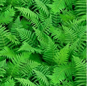 Picture of Landscape Medley Ferns Green Fern Leaves Cotton Fabric