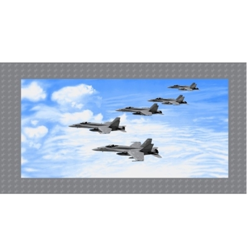 Air Show Boeing Fighter Jet Formation Military 24x44 Fabric Panel